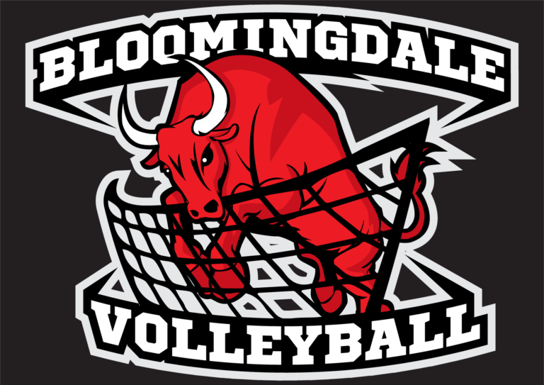 Bloomingdale Volleyball-final-web